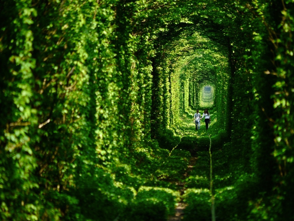Tunnel de l'amour (Ukraine)