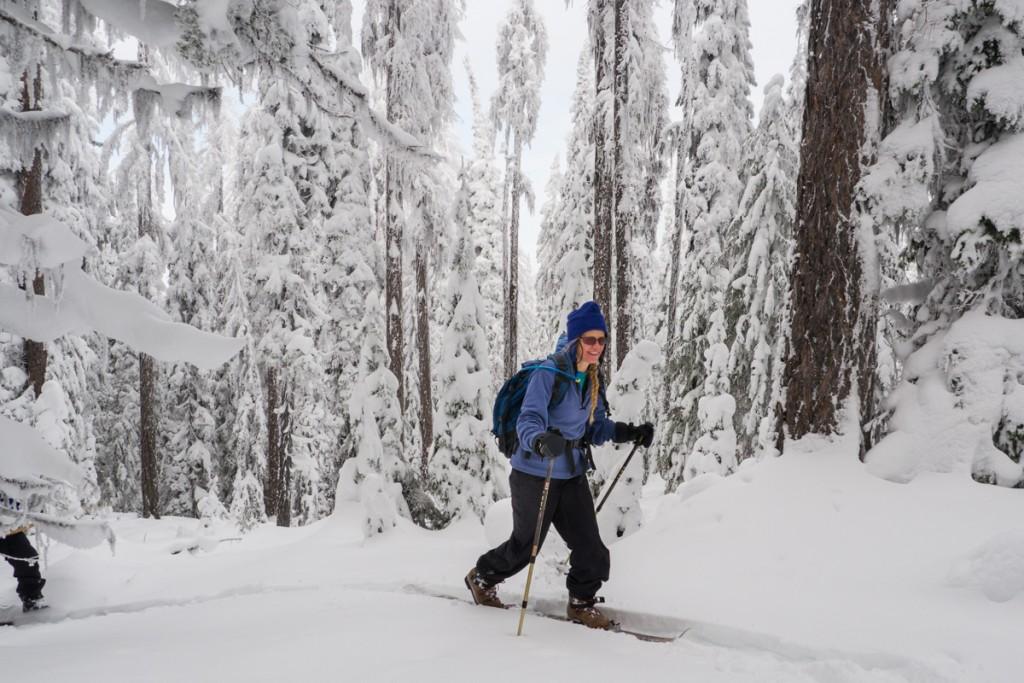 ski hok 2